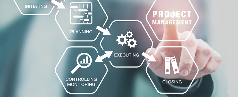 Project Management, oversight and implementation